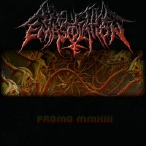 Afflictive Emasculation - Promo MMXIII cover art