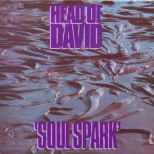 Head of David - Soul Spark cover art