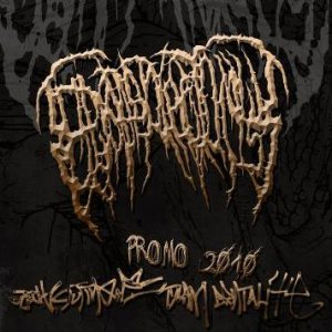 Epicardiectomy - Promo 2010 cover art