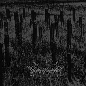 Truppensturm - Fields of Devastation cover art