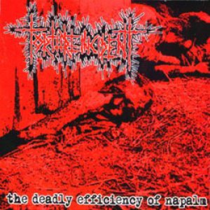 Torture Incident - The Deadly Efficiency of Napalm cover art