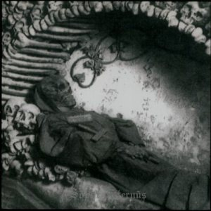 Sopor Aeternus and the Ensemble of Shadows - ...Ich töte mich... cover art