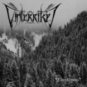 Vinterriket - Finsternis cover art