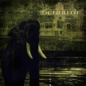 Senmuth - Rain Eclipse cover art