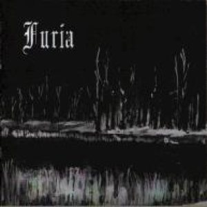 Furia - I Krzyk cover art