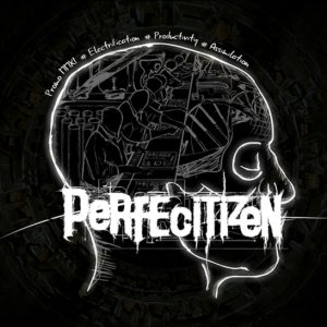 Perfecitizen - Promo MMXI cover art