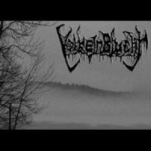 VolkeinBlucht - Reaping the Blackness cover art
