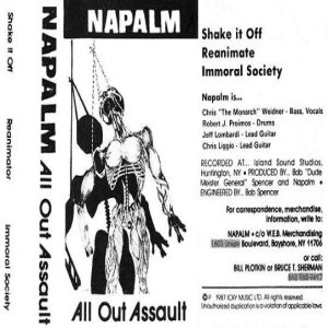 Napalm - All Out Assault cover art