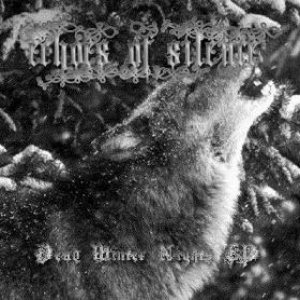Echoes of Silence - Dead Winter Nights cover art