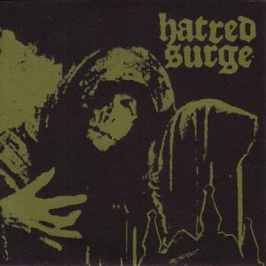 Hatred Surge - Con Artist / Lack of Intelligence cover art
