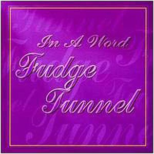 Fudge Tunnel - In a Word cover art