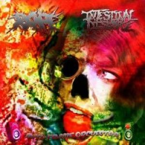 Intestinal Disgorge - Anti-Female Orchestra cover art