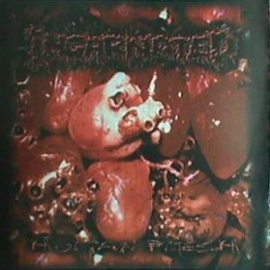 Incarnated - Human Flesh cover art