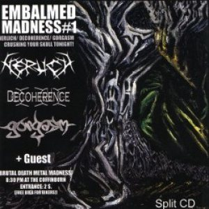 Nerlich - Embalmed Madness cover art