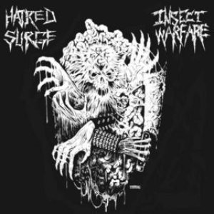 Hatred Surge / Insect Warfare - Insect Warfare / Hatred Surge cover art