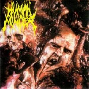 Human Mincer - Grotesque Visceral Extraction cover art