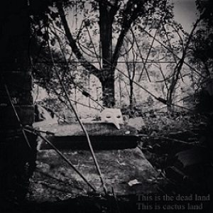 Capa - This Is the Dead Land This Is Cactus Land cover art