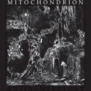 Mitochondrion - Antinumerology cover art