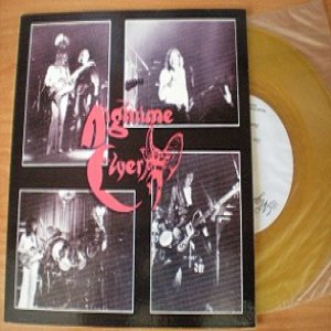 Nightime Flyer - Out with a Vengeance cover art