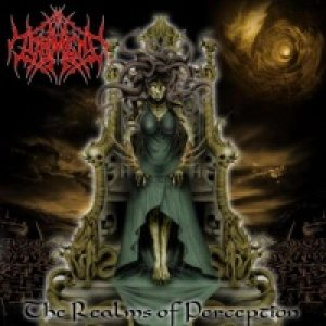 In Torment - The Realms of Perception cover art