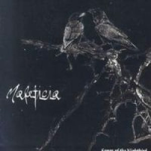 Maleficia - Songs of the Nightbird cover art
