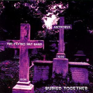 The Flying Hat Band - Demo cover art