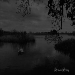 Lykauges - Swan Song cover art