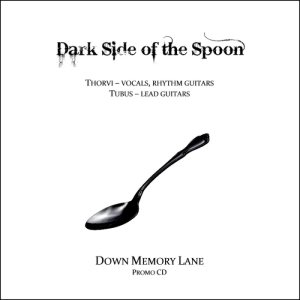 Dark Side of the Spoon - Down Memory Lane cover art