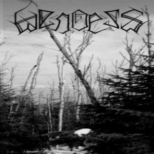 Wendess - Wendess cover art