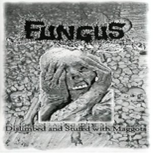 Fungus - Dislimbed and Stuffed With Maggots cover art