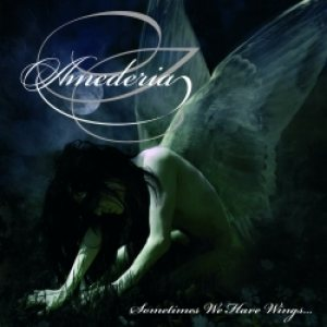 Amederia - Sometimes We Have Wings cover art