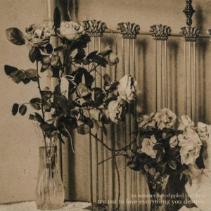 An Autumn For Crippled Children - Try Not to Love Everything You Destroy cover art
