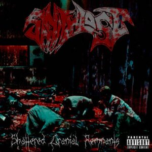 Sanity Lost - Shattered Cranial Remnants cover art