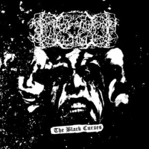 Darkness Enshrouded The Mist - The Black Curses cover art