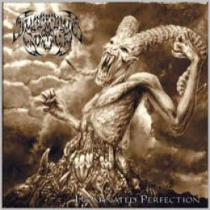 Suffering Souls - Incarnated Perfection cover art