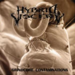 Hybrid Viscery - Grindcore Contaminations cover art