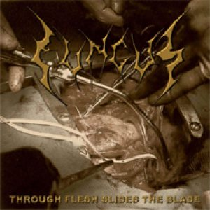 Fungus - Through Flesh Sides the Blade cover art
