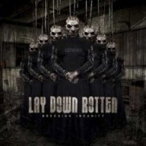 Lay Down Rotten - Breeding Insanity cover art