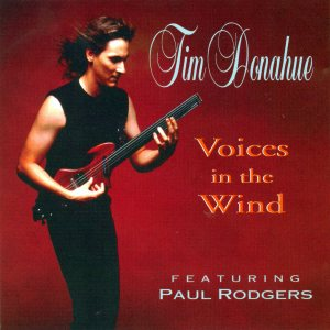 Tim Donahue - Voices in the Wind cover art