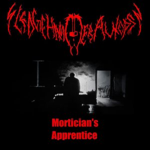 Sledgehammer Autopsy - Mortician's Apprentice cover art