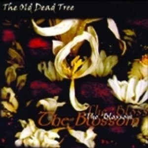 The Old Dead Tree - The Blossom cover art
