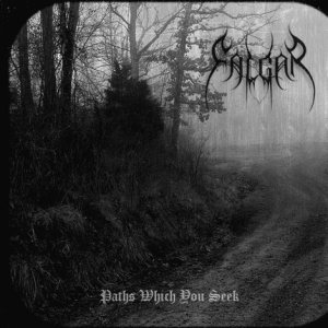 Falgar - Paths Which You Seek cover art