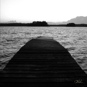 Austere / Isolation - Bleak... cover art