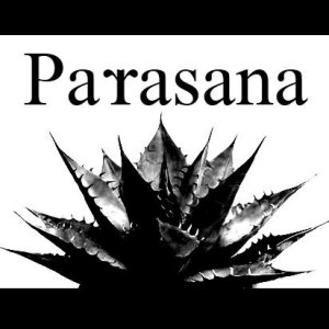 PARASANA - Smells of Cigarette cover art