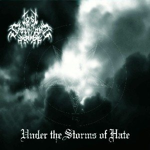 Lost in the Shadows - Under the Storms of Hate cover art