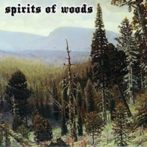 Old Man of the Desert - Spirits of Woods cover art