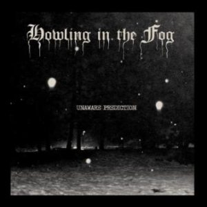 Howling in the Fog - Unaware Prediction cover art