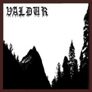 Valdur - Berserrker/Demon Wisdom cover art