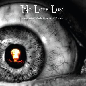 No Love Lost - What's It Like to Be Awake? cover art
