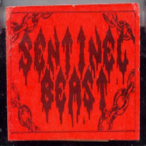 Sentinel Beast - Kill the Witch cover art